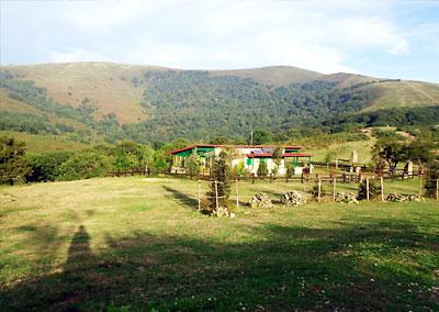 Collado-Campo-La-Cruz